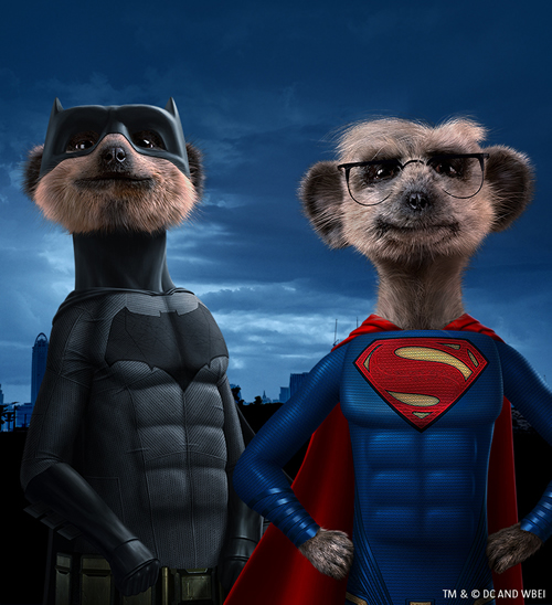 Comparethemarket.com has linked up with Warner Bros. Pictures to offer limited edition Aleksandr and Sergei toys with the two brand characters as Batman and Superman respectively.