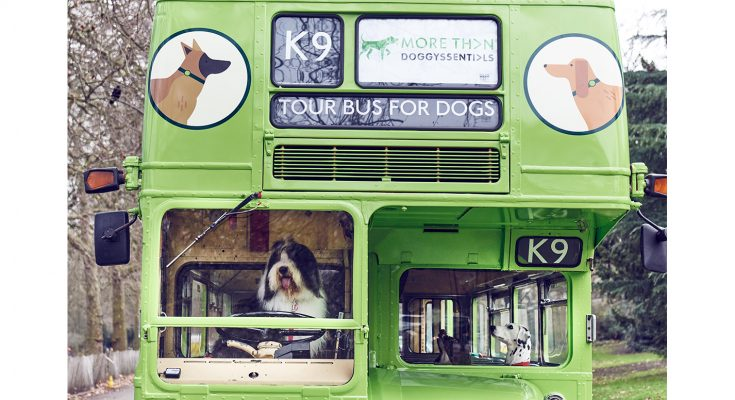 Insurance brand More Than has launched what it claims is the world's first ever city tour bus for dogs, with every element of the experience designed to appeal to man's best friend, in London.