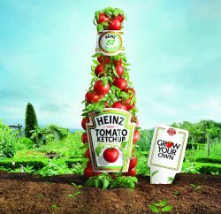 Heinz Tomato Ketchup is launching its 'Grow Your Own' promotional campaign from March 2017 and will be giving 500,000 seed packets to schools and consumers.