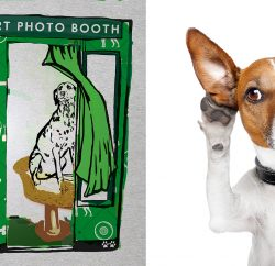 Pet insurer MORE TH>N (More Than) has launched the Pet Paws-Port Photo Booth, a free service offering dog owners the chance to have a high-quality passport photo taken of their pet pooch.