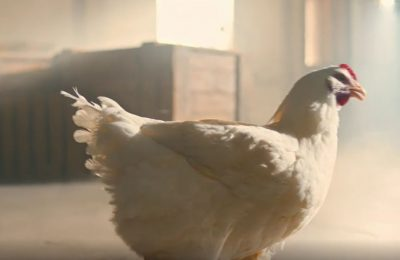 KFC's 'Dancing Chicken' ad – featuring a chicken dancing to rap music -- was the ad which generated the most consumer complaints in 2017, according to the Advertising Standards Authority's Top 10 ranking of the year's most complained about ads.