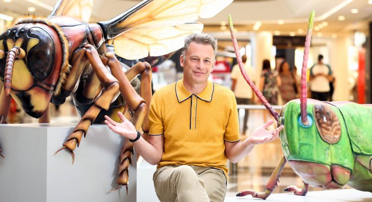 Shopping centre owner intu has launched Big Bugs On Tour, an experiential roadshow backed by naturalist Chris Packham that brings adults and children face-to-face with 12 giant British bugs at 13 malls nationwide. Photo credit Matt Alexander/intu