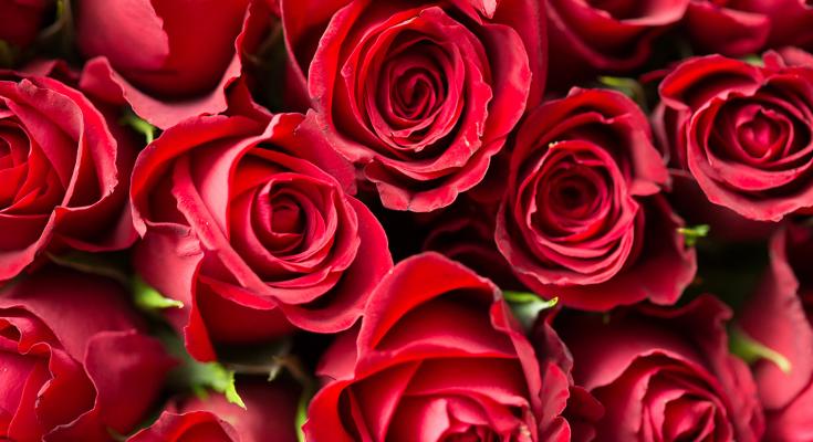 valentines savvy